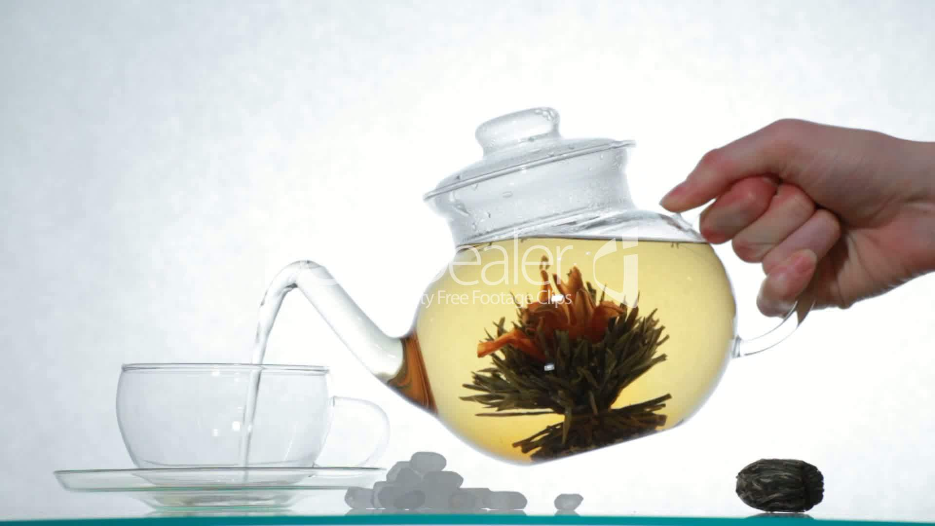 Chinese flower tea - Flower Tea Royalty Free Videos