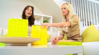 Female Friends Shopping Trip
