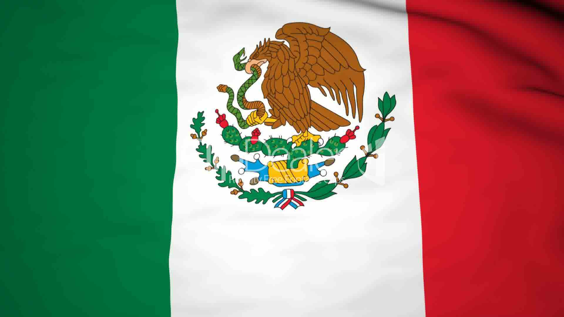 the background of the flag of mexico video royalty free video and