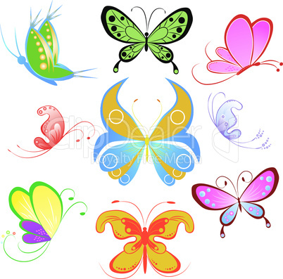Collection of multicolored butterfly.