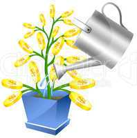 Money tree with watreing can