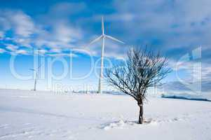 Wind Turbines in Winter Landscape