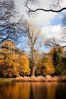 Lazienki Park Autumn Scenery