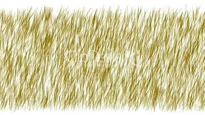 brown grass swing.botany,environment,farm,field,flight,footage,fresh,freshness,garden,