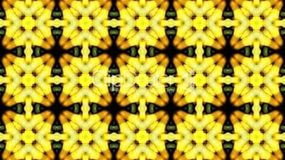 Gorgeous oriental flower lotus fancy background.Buddhism Mandala flower,kaleidoscope,oriental religion texture.