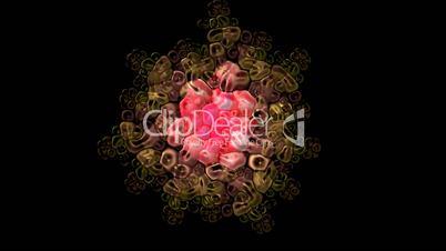 animation of cells,virus.lotus fancy pattern,Buddhism Mandala flower,kaleidoscope,oriental religion texture.