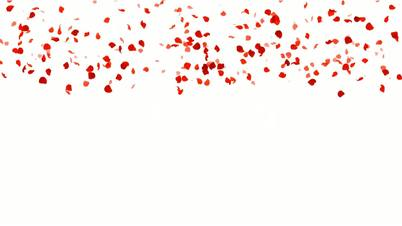 Rose Petals Falling.love,pattern,romantic,rose,valentine,wedding,