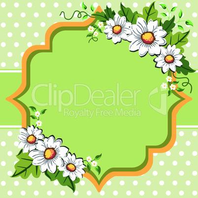 Spring daisy flower frame