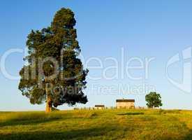 Henry House at Manassas Battlefield