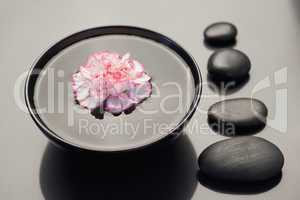 Pink and white carnation floating in a black bowl with aligned b