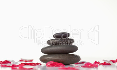 Pebbles stack and pink petals