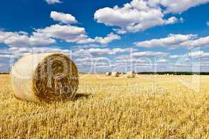 straw bales in a field with blue and white sky