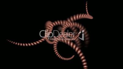 spiral invertebrates body and swirl stripe wire,DNA chain.