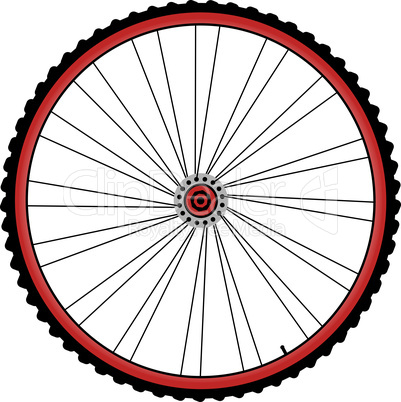 bicycle wheels with spokes and tires isolated on white