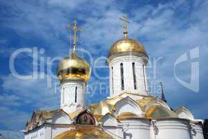 Domes of church