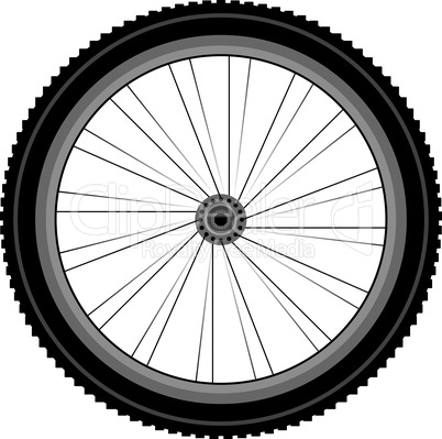 detailed Front wheel of a mountain bike