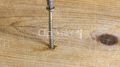 Electric screwdriver screwing the screw