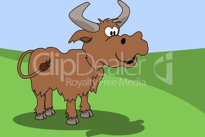 Fröhlicher Stier auf einer Wiese