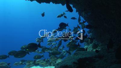 Unterwasserhöhle