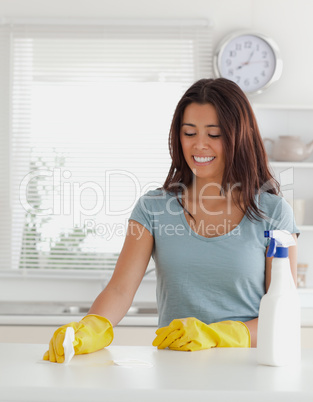 Lovely woman doing the housework