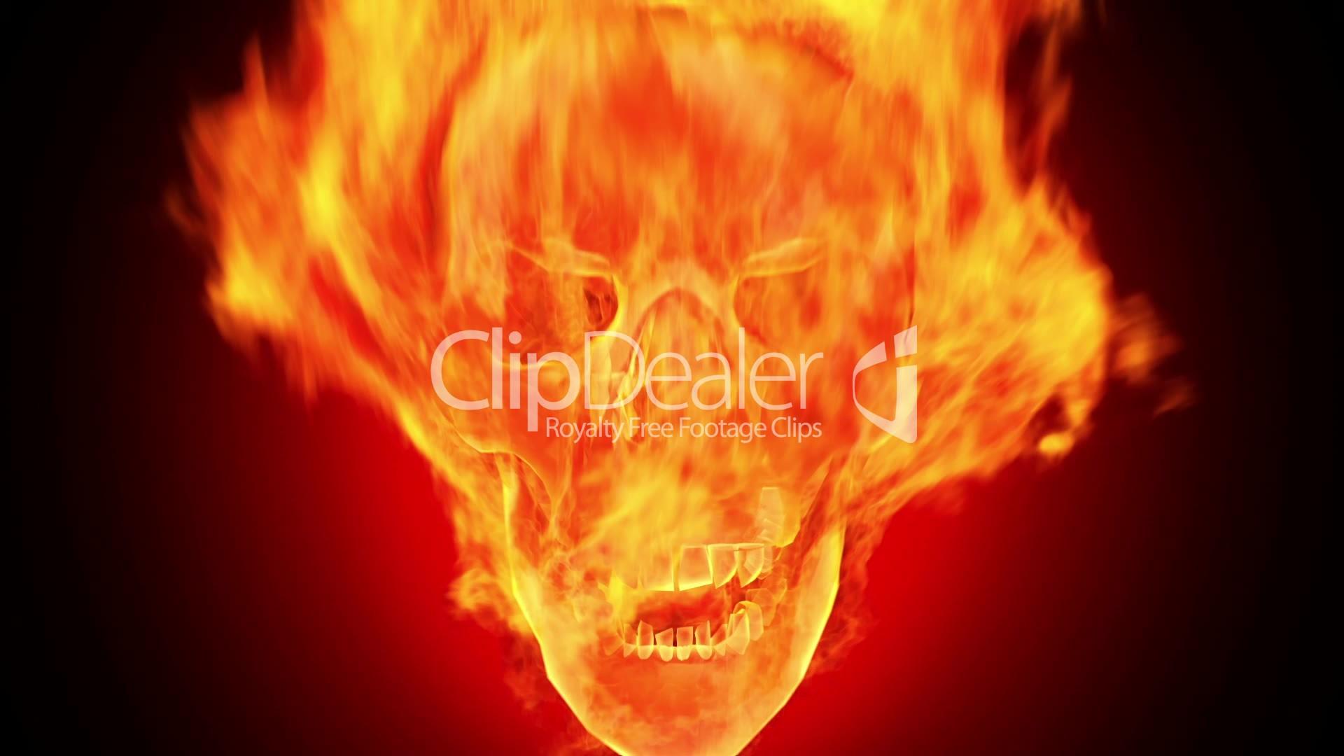 Fire skull, HD loop: Lizenzfreie Stock Videos und Clips