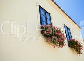 Facade with a balcony with flowers