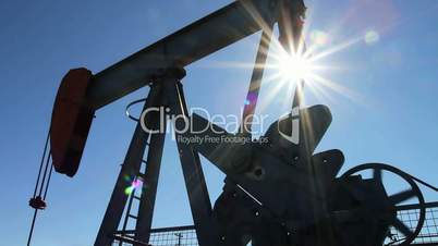 Crude oil pump