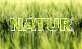Natur Text Silhouette