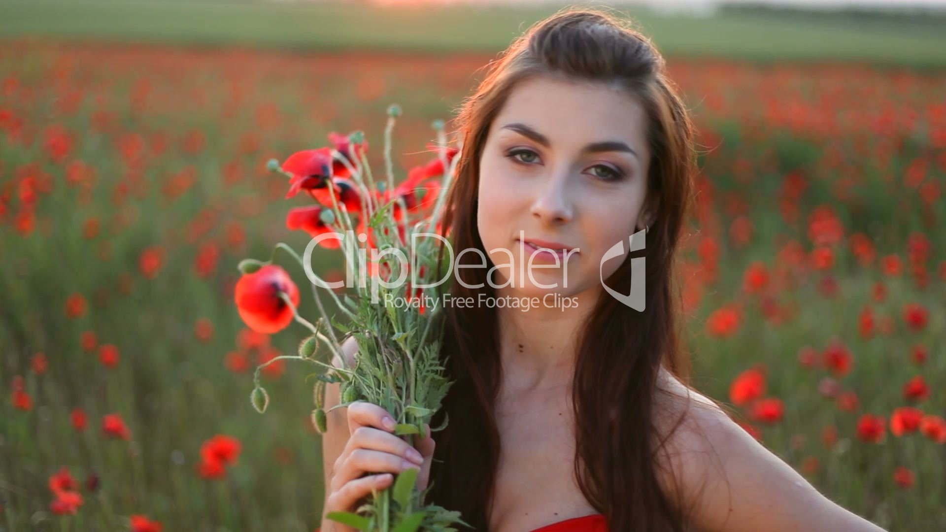 d4d48cced62f Young woman with bouquet of red poppies on meadow  Lizenzfreie Stock ...