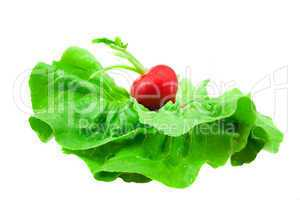 radish lying on a green leaf isolated on white
