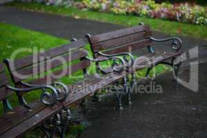 wet benches in the park on rain