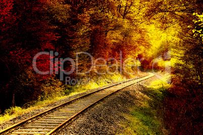 Railroad tracks through an autumnal forest