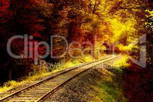 Railroad tracks through an autumnal forest