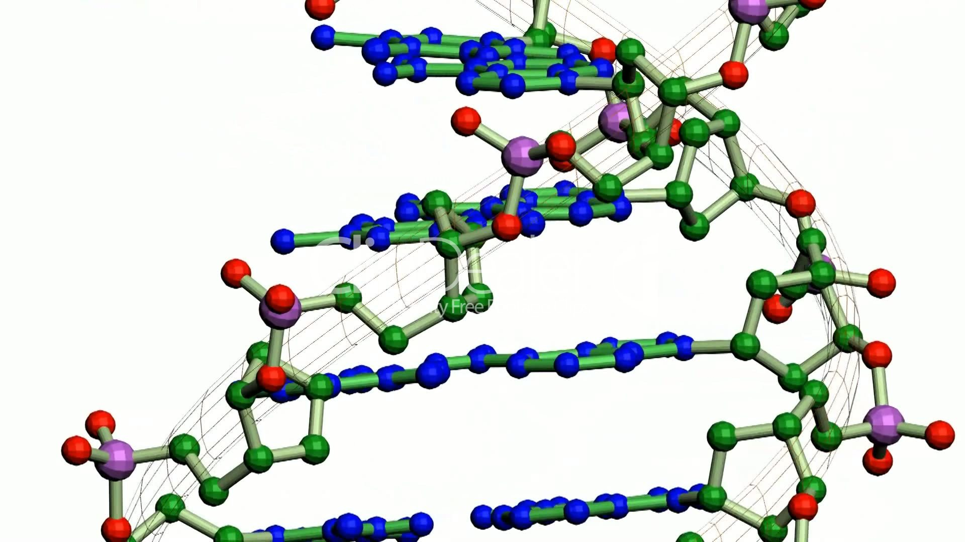 molecular biotech Molecular biotechnology publishes original research papers on the application of molecular biology to both basic and applied research in the field of biotechnology.