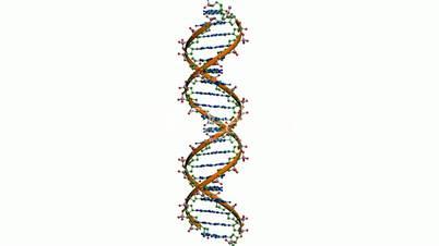 Rotation of 3D DNA.medicine,biology,science,research,medical,helix,biotechnology,molecule,molecular,
