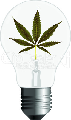cannabis energy