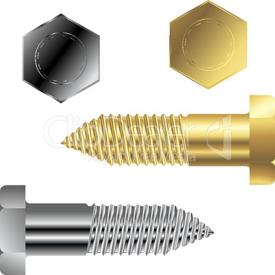 gold and silver screws