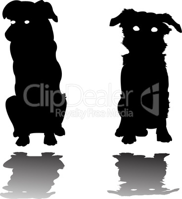 two little dogs silhouettes