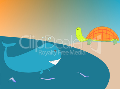 whale and turtle