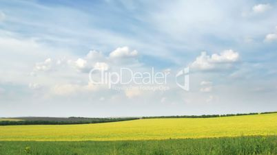 loop of fields and sky. time lapse HD