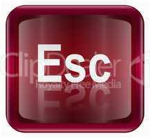 Esc icon dark red, isolated on white background
