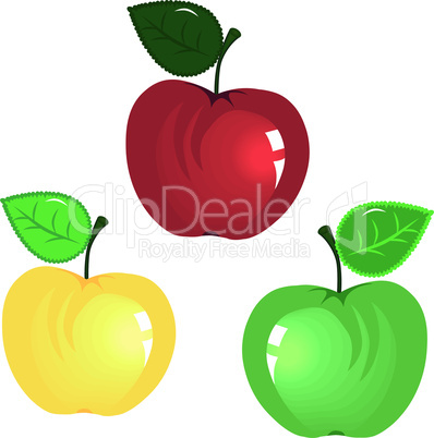 Apple isolated on white background.