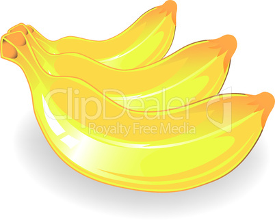 Three vector banana icon.