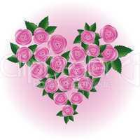 Pink rose heart