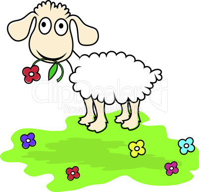 Cartoon sheep,