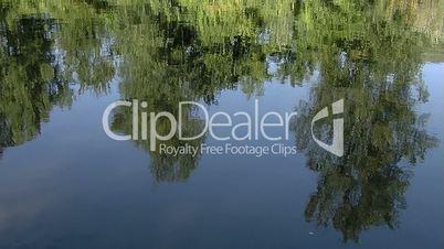 River reflection close-up