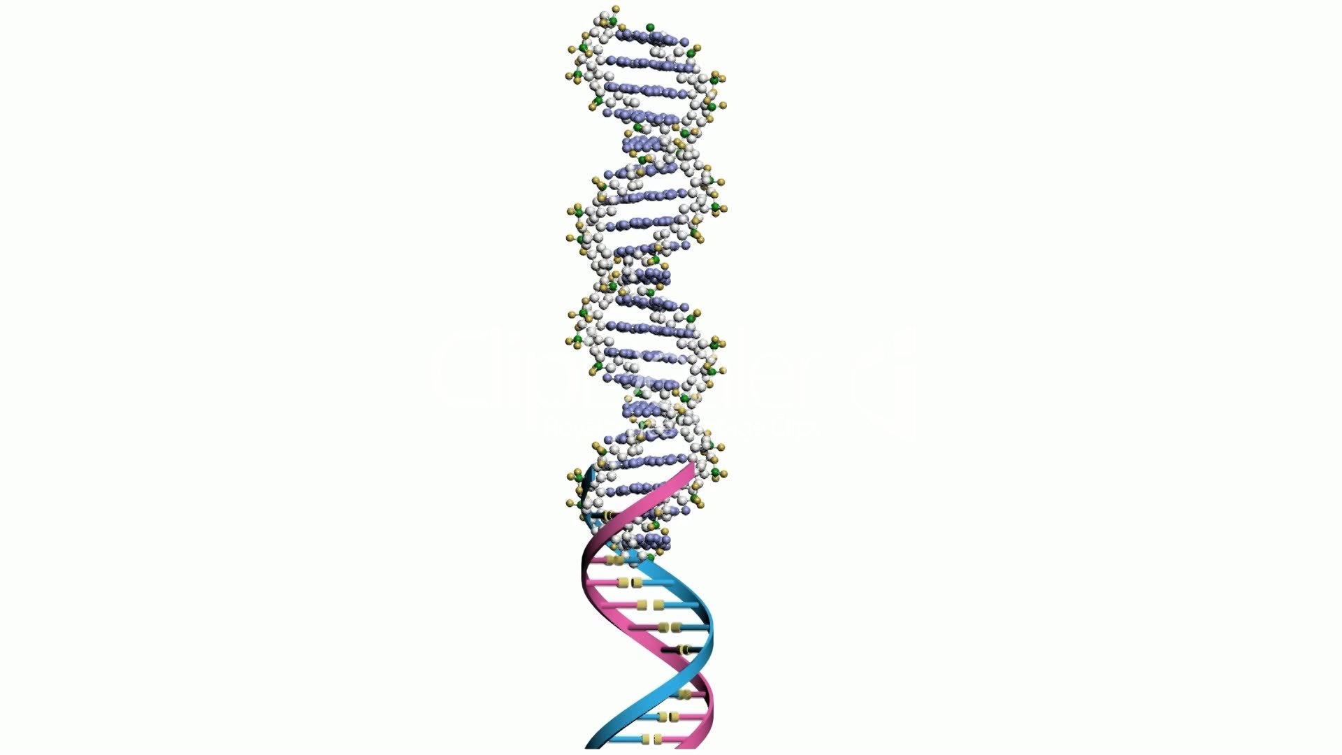 Rotation Of 3d Dna Medicine Biology Science Research Medical Helix Biotechnology Molecule