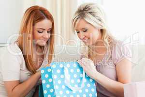 Young Charming Women with shopping bags