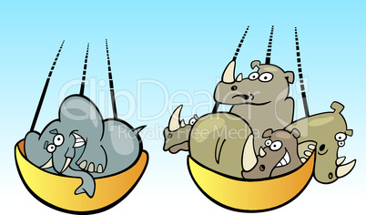 elephants and rhynos on balance