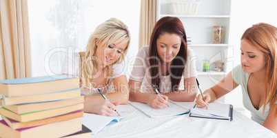 Women sitting at a table learning
